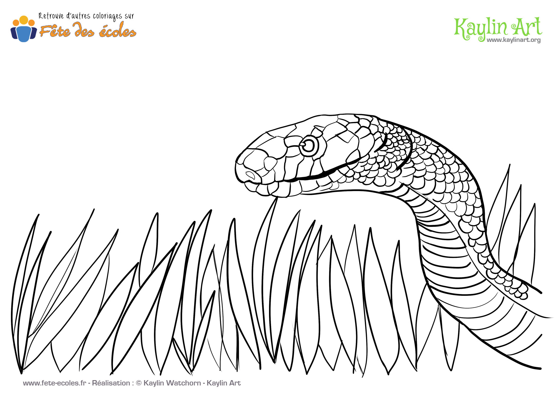 Coloriage de serpent