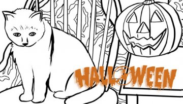 Le chat d'Halloween