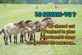 LE SAVAIS-TU ? : Le cheval historique